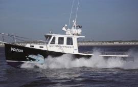 Boot huren IJmuiden. Motorboot Wahoo